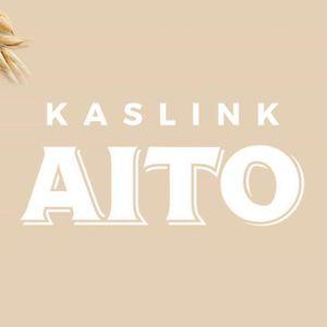 芬蘭 AITO